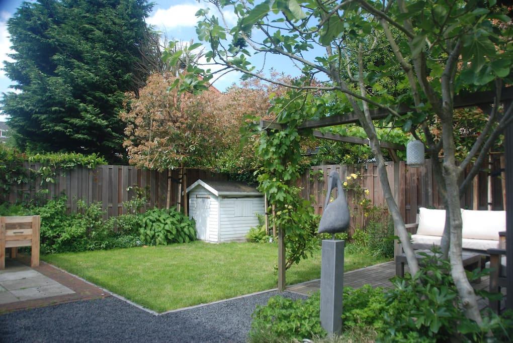 spacious, sunny garden