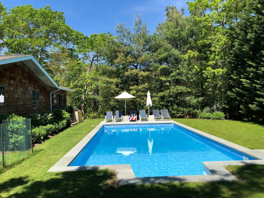 South facing pool surrounded by hydrangeas.