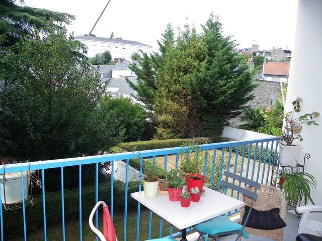 Grand appartement avec Chat ^^ - Nantes - Byt