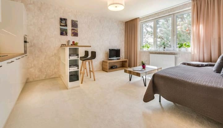 Bratislava Budget Apartment 2