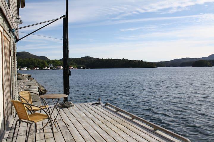 Lauvneset - Førde