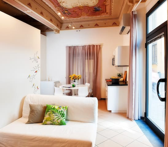 La Casa di Gelsomina - Lucca - Flat