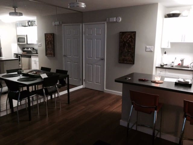Deluxe Executive  2 BR condo w/pool - Winnipeg - Condominium