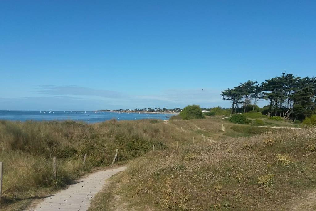 Le chemin qui mène à la plage de Kerguélen, à 300 mètres de la maison