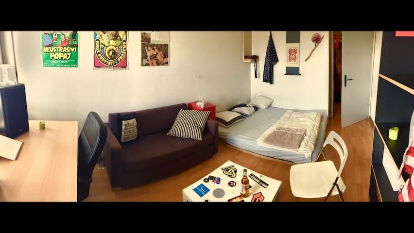 EPFL - Chambre Double à sous louer - Ecublens - Apartment