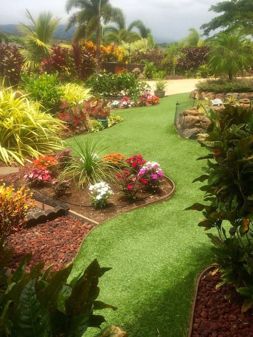 Updated beautiful paradise garden!