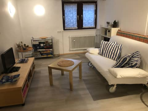 Nice flat in the recreation area of Munich