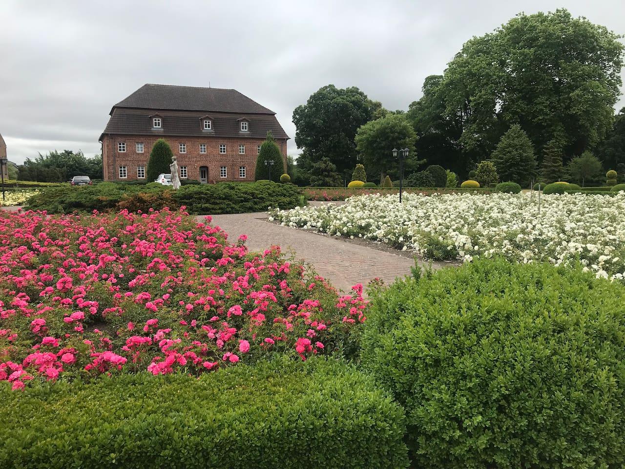 Blick vom Rosenrondell zum Kavalliershaus in dem sich die Ferienwohnung befindet. Auf der rechten Seite sieht man einen Teil vom Park.