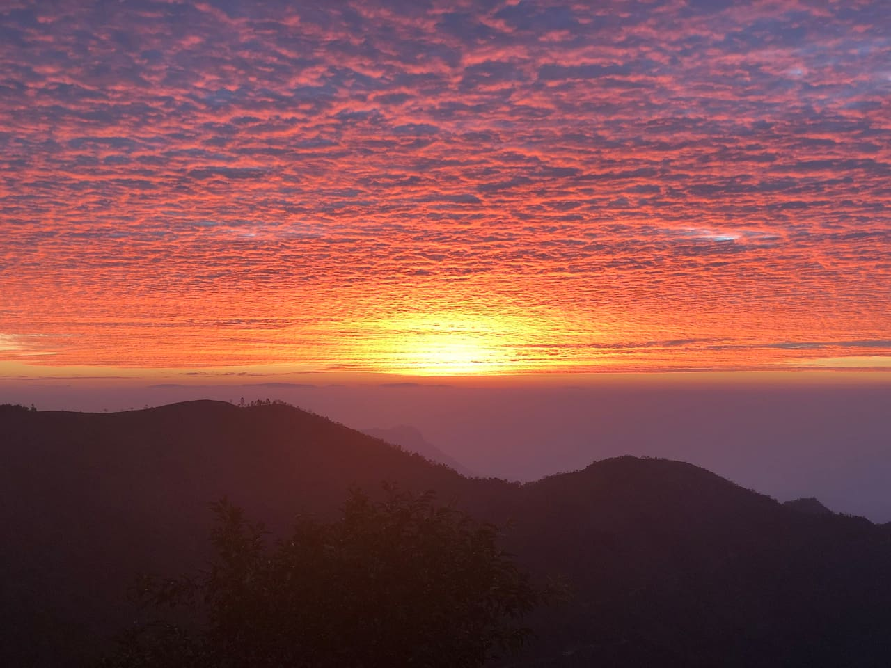 A gorgeous sunrise taken from sunrise chalet on Feb 6th 2019