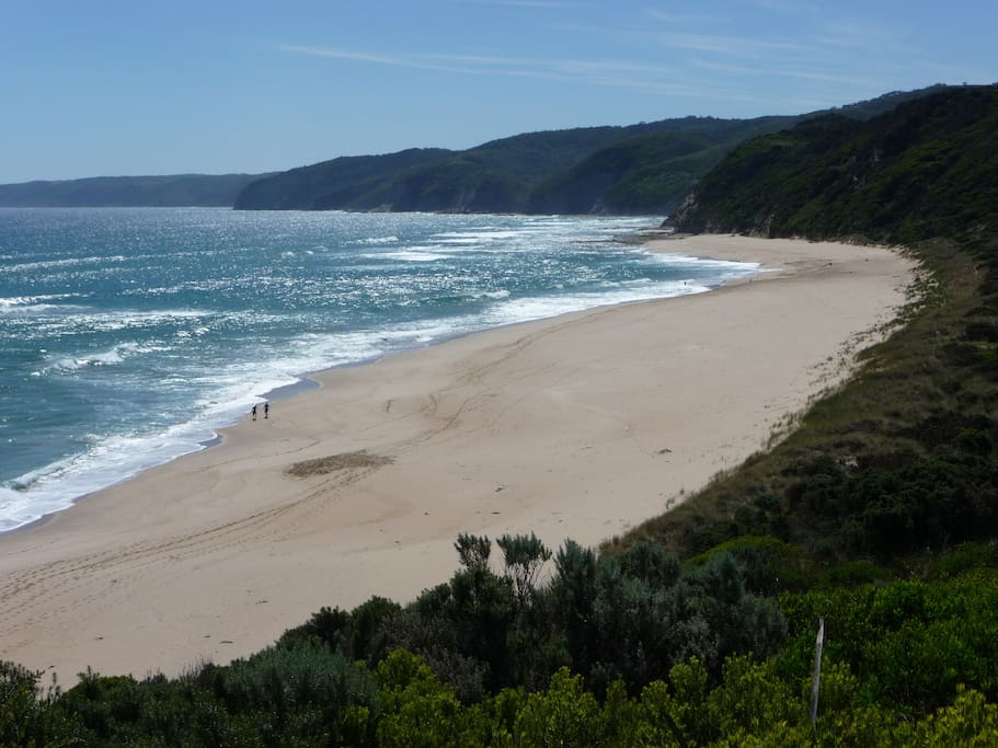 Dog friendly Johanna Beach