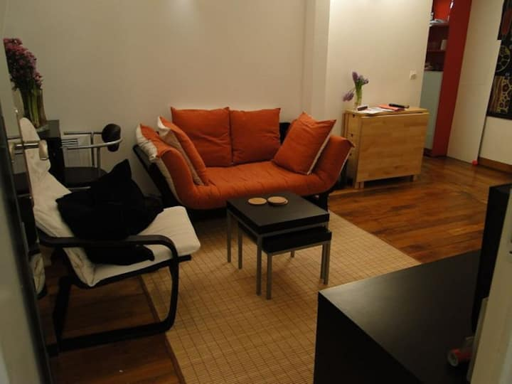 Bastille, Gorgeous 2 bedroom Loft 50m2