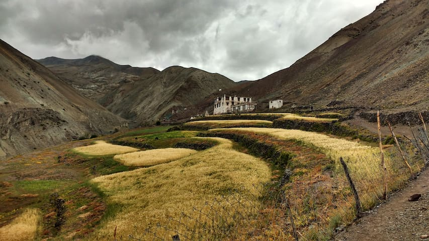 The One home village homestay, Yurutse - Ladakh - Hus