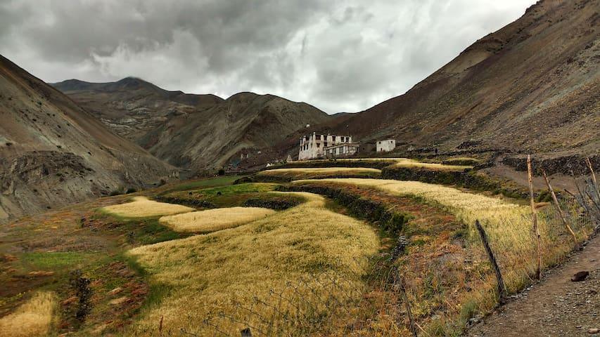 The One home village homestay, Yurutse - Ladakh - Huis