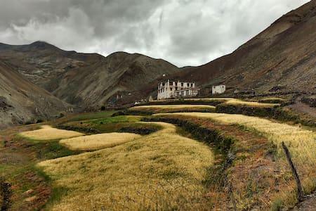 The One home village homestay, Yurutse - Ladakh - บ้าน