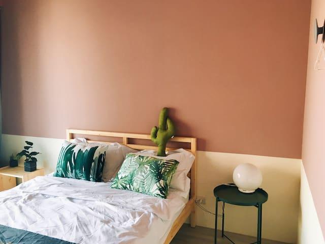 粉紅色的牆搭配超Q仙人掌
