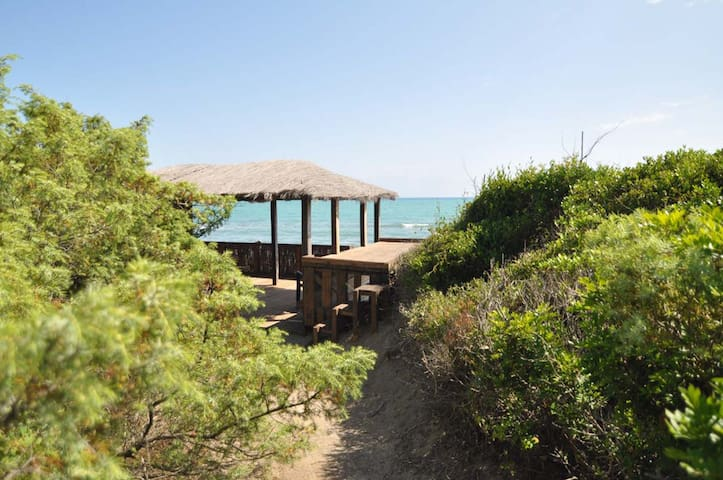 Roccamare villa close to the sea - Castiglione della Pescaia - Villa