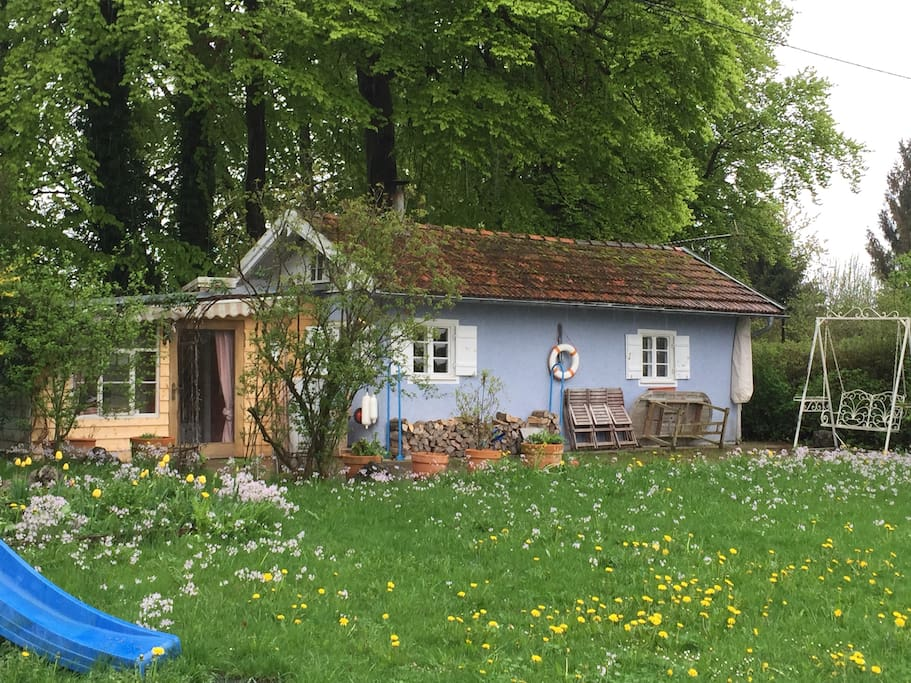 Blick aufs Haus - Anbau / Wintergarten wurde soeben grau gestrichen