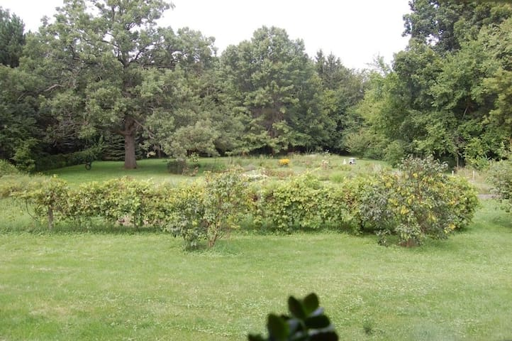 Back acre flower gardens and 250+ year old oak tree named Victoria.
