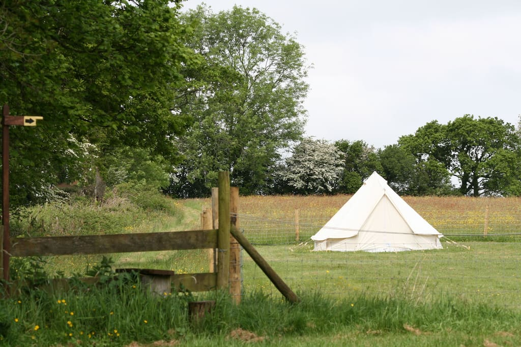 You can upgrade to our lovely canvas bell tents. We do all the hard work by setting it up for you!  Please ask for details.