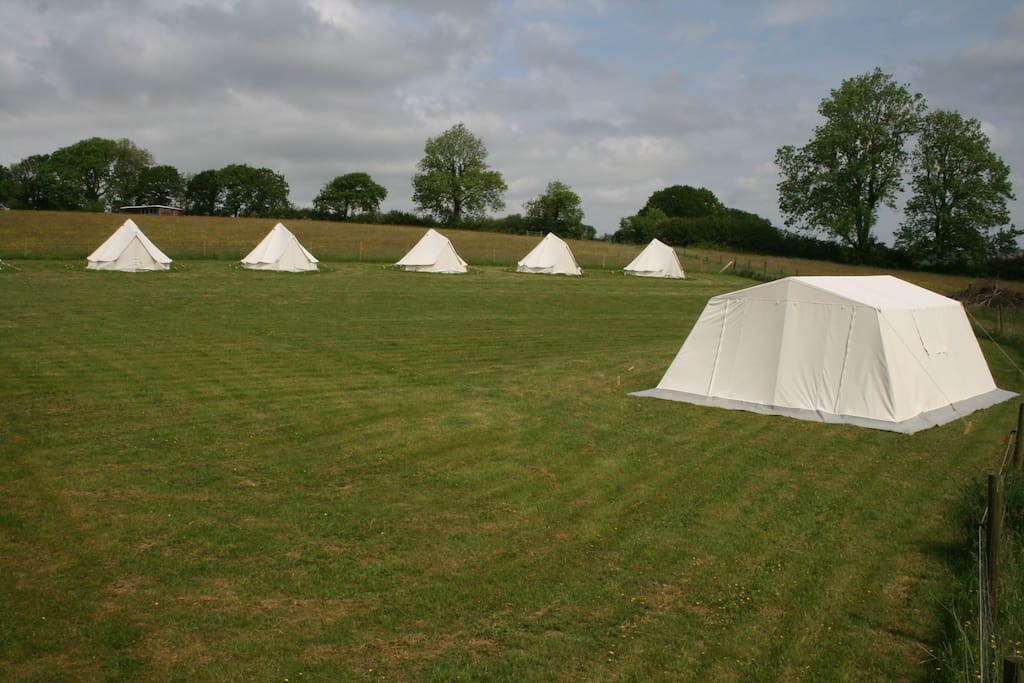 A canvas village set up ready to go in one of our camping fields.