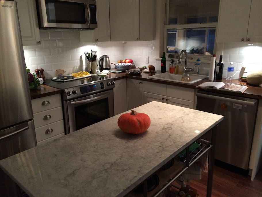 Newly remodeled kitchen with induction stove, miele dishwasher and top end cookware