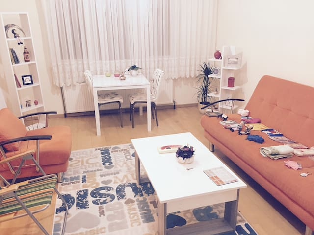 Private room in a clean house. - Ankara - Apartmen