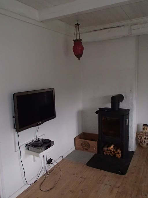 Living room with fire place and TV
