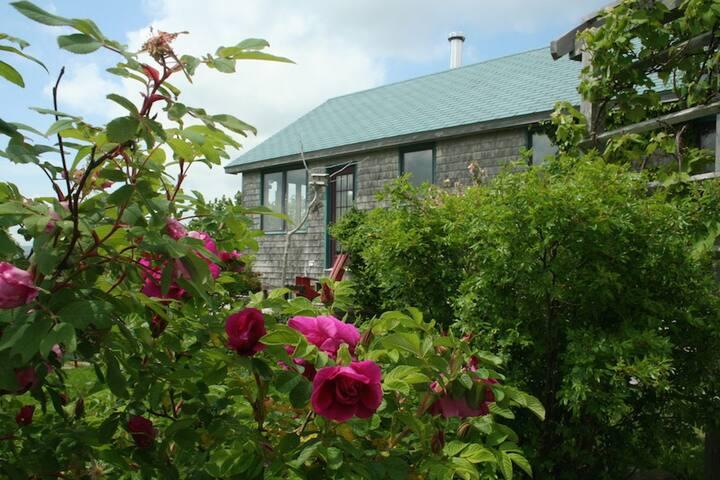 Ivy Cottage, South Side Harbour - Antigonish - บ้าน
