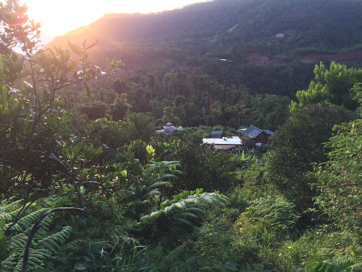 Jungle Off-grid Full House on Permaculture Farm
