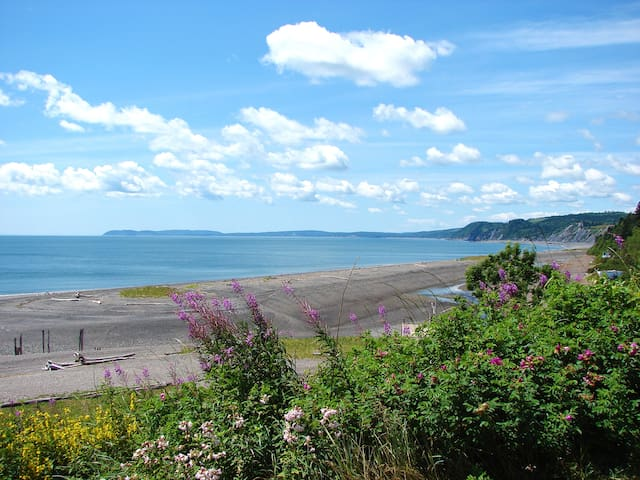 The shore and cliffs of the Minas Basin, a few minutes' walk away..
