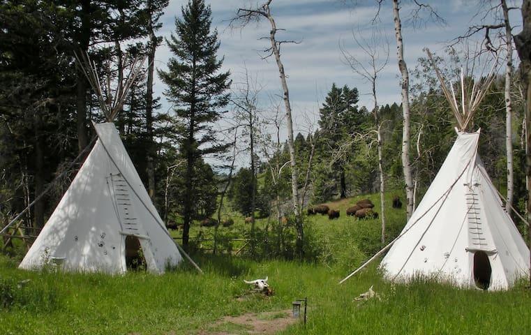 Log Cabin No. 2-Wildlife Immersion - Townsend - Casa de campo