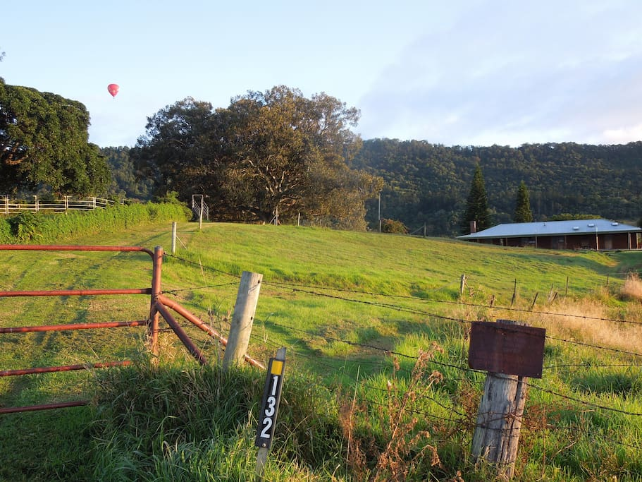 This is the front gate and you can see the house in the distance. A hot air balloon overhead is making the most of a beautiful still winter's morning.