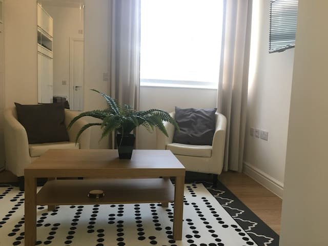 Classy Brixton studio  - 10 mins to Central London