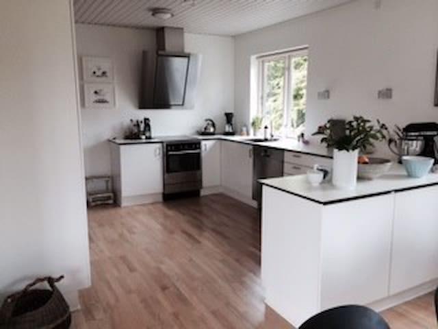 Stort hus med dejlig have - Viborg - Casa