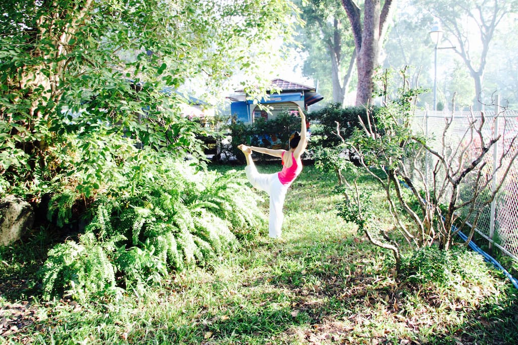 Practice yoga in the botanic garden, 2 minutes walking from our house
