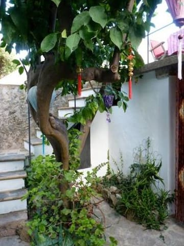 Romantic and secluded cottage - Valldemossa - Casa