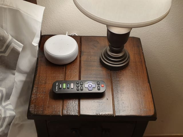 Alexa and Roku remote