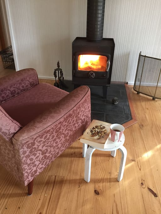 cosy wood heater for winter days