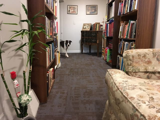 "Daisy checking out the Catacombs Library housing over 500 gently used, vintage, and out-of-print books covering historical, spiritual, science fiction, novels, and other ""odd & strange"" titles"