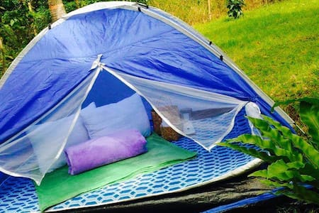 Glamping next to Nature - Tent 4 - Lemery - 帳篷