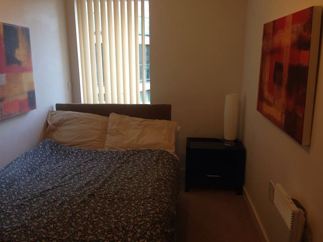 Room for one/possibly two - Birmingham - Wohnung