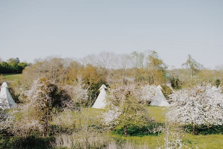 Blissful Tipi 1 - Luxury Wye Valley Glamping
