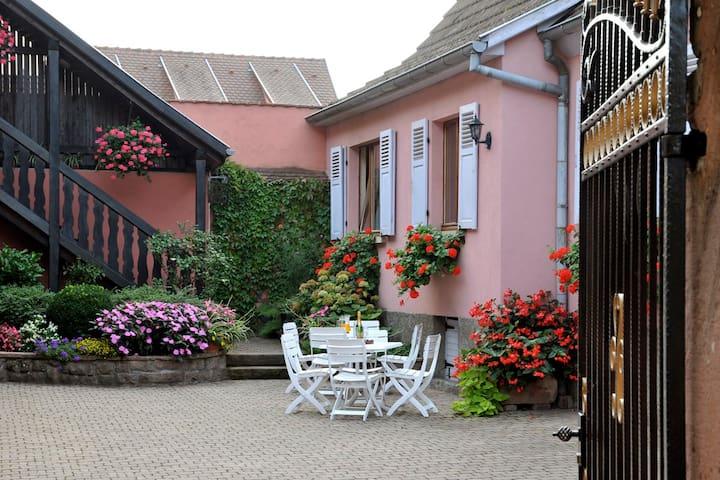 Gîtes-Weyer Appartement n°1 - Bergheim