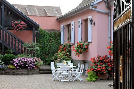 Gîtes-Weyer Appartement n°1 - Bergheim - Huoneisto