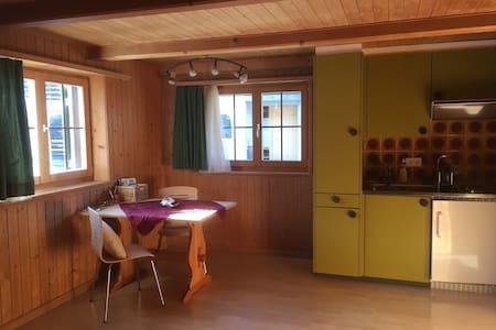ruhig gelegenes Studio in den Bündner Bergen - Klosters-Serneus - Wohnung