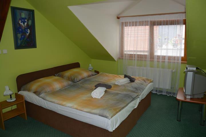 Oáza ve středu města, vířivá vana, sauna, bazén. - Jindřichův Hradec - Appartamento