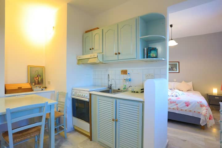 Sterna Studio: In Gaios Paxos, nearby amenities