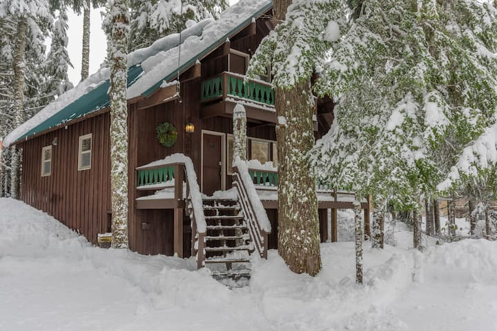 Cozy dog-friendly Moosewood Cabin for family winter vacations, hot tub