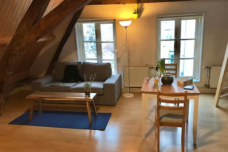 Cozy room, 600 years old attic, nice location - Utrecht