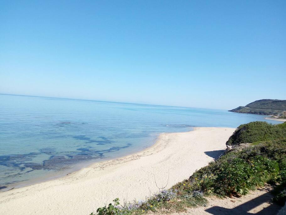 la bellissima spiaggia di Lu Bagnu, a pochi passi dall'alloggio!!!
